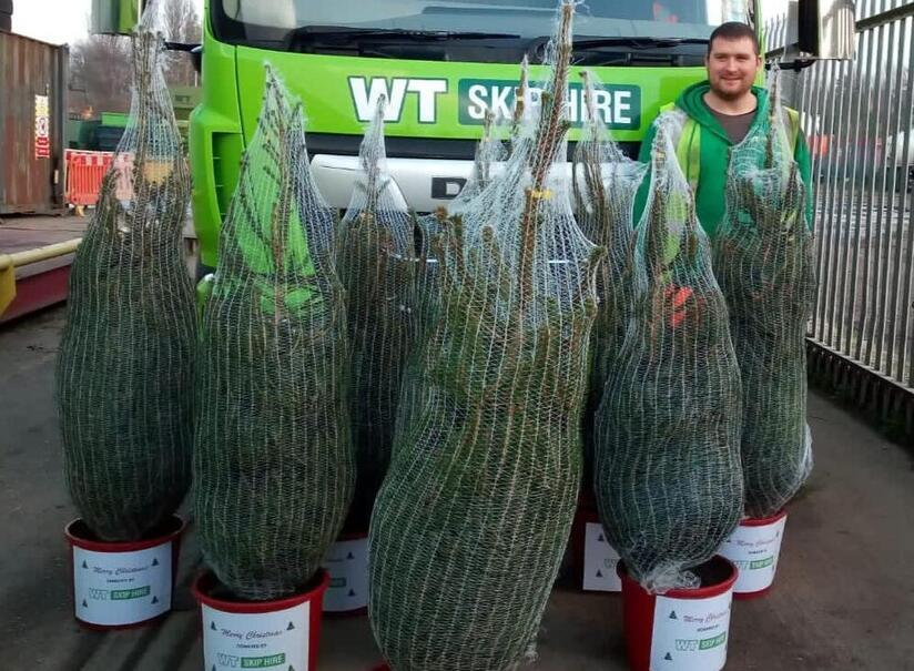 Christmas trees ready to be donated