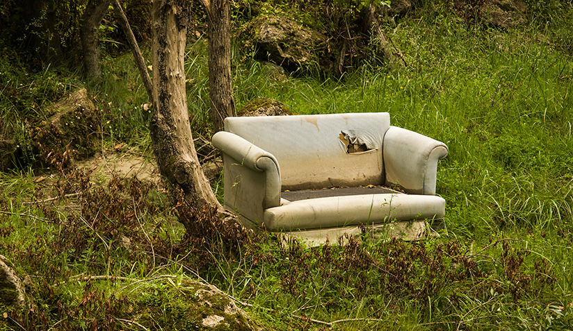 Sofa left in field